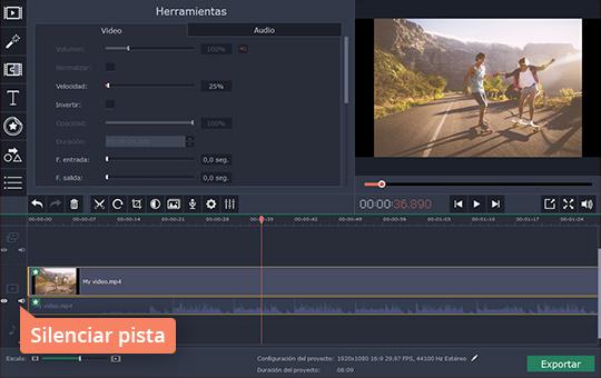 Edite los vídeos en cámara lenta rápidamente con el programa de Movavi