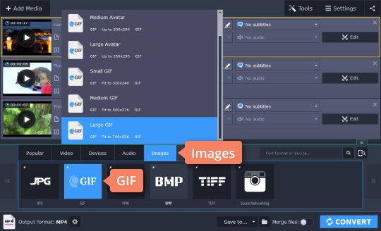 Step 3 - How to convert WebM to GIF and vice versa