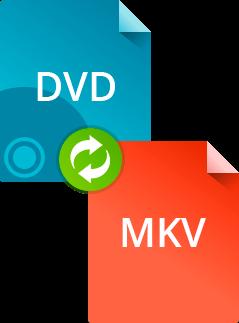 Как конвертировать DVD в MKV в Movavi Конвертере Видео