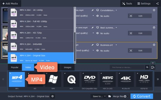 How to Add Subtitles to MP4 | Add SRT to MP4 with Movavi
