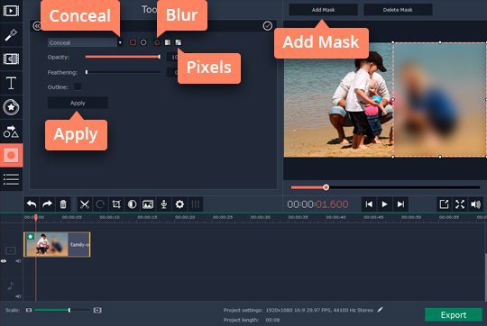 Adjust the effect in the video editor blur tool