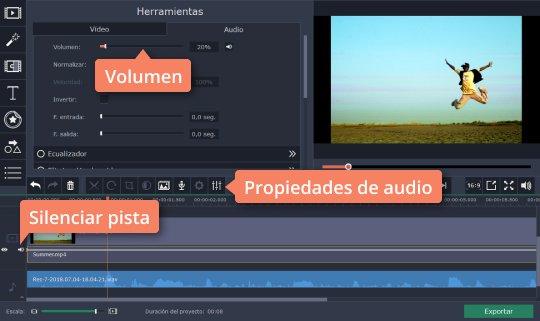 Aprenda cómo usar el grabador de voz de Movavi