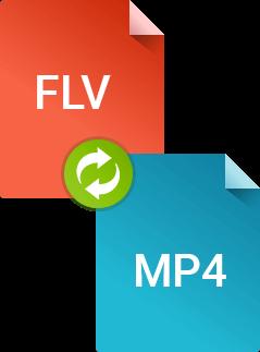 Как конвертировать FLV в MP4 в Movavi Конвертере Видео