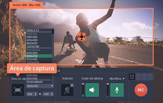 Descargue los archivos Flash fácilmente con Movavi Screen Capture