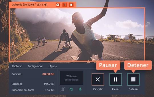 Descargue los vídeos Flash con el programa sencillo de Movavi
