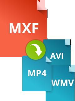 Как конвертировать MXF в другие форматы при помощи Movavi Конвертера Видео