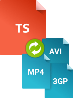 What is a TS file? | Convert TS to MP4 with Movavi