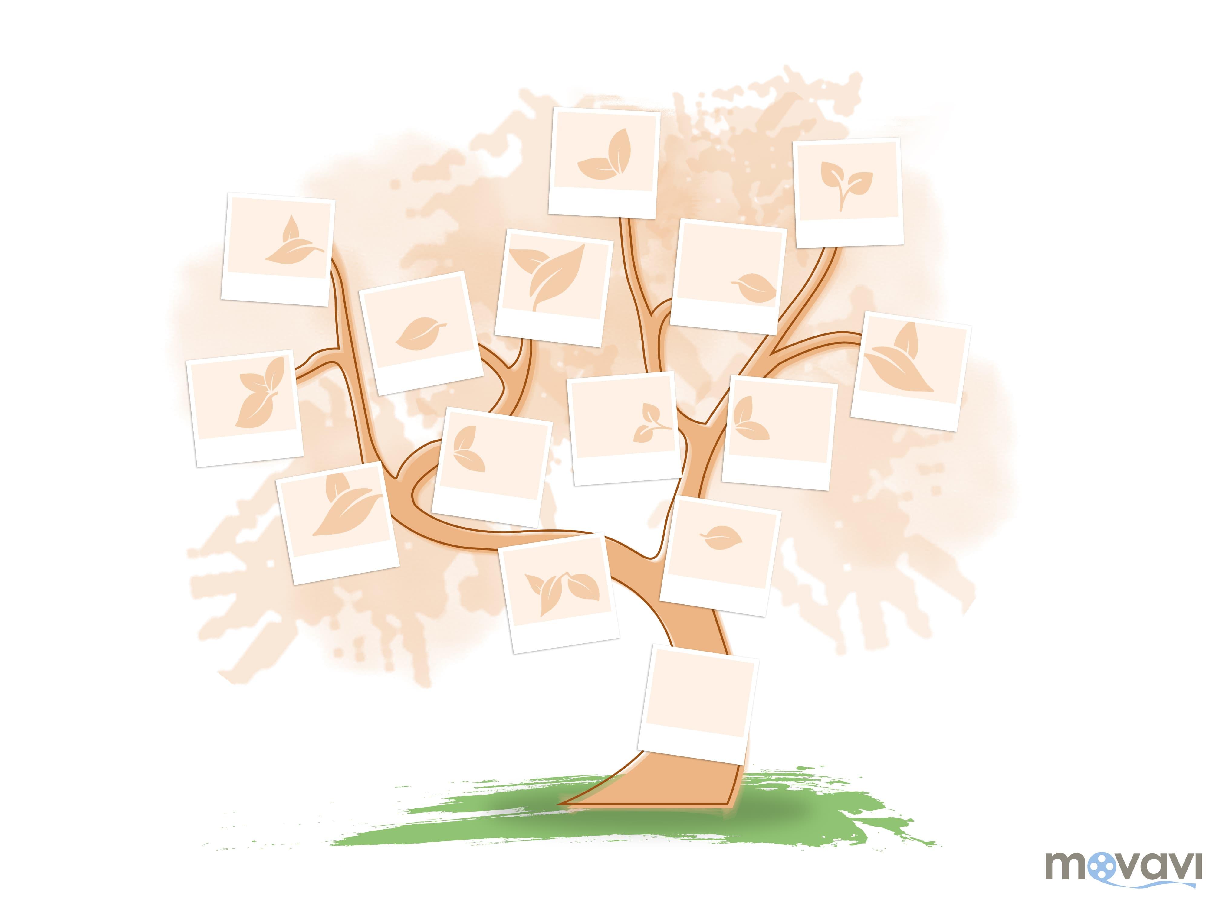 Как составить генеалогическое древо схема фото 352