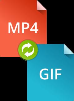 Как конвертировать MP4 в GIF при помощи конвертера Movavi