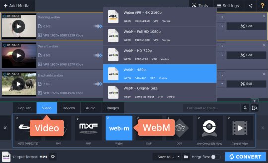 Step 3.1 - How to reduce the size of a WebM file