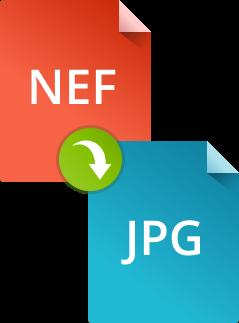 Как конвертировать NEF в JPG при помощи конвертера Movavi