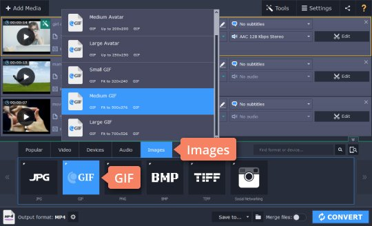 Step 4.1 - How to convert AVI to GIF and vice versa